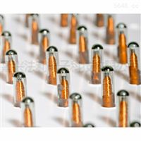 RFID电子标签-玻璃管Vigo 高频Glass Tag Vigo 12mm 6B0201载码体